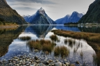 Tuesday Photo — Milford Sound Morning
