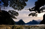 Tunnel, monorail to Milford Sound?
