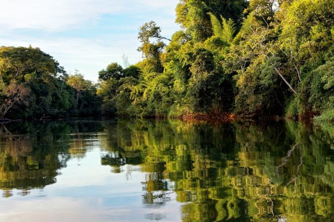 Took a canoe trip on the Iguazu river