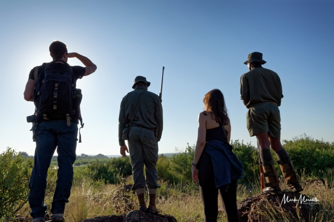Morning walk with armed rangers, Kruger National Park