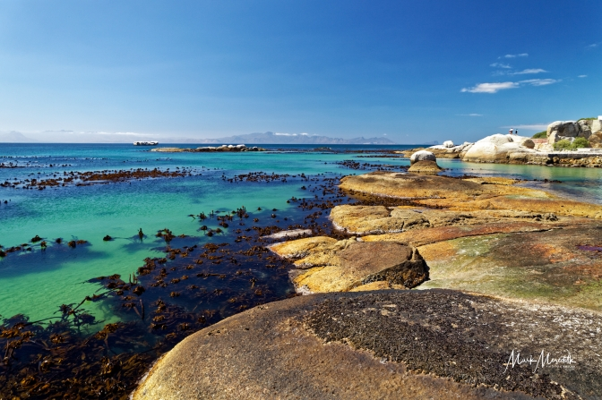 Coastal scenery at near Boulders Beach, Cape Town