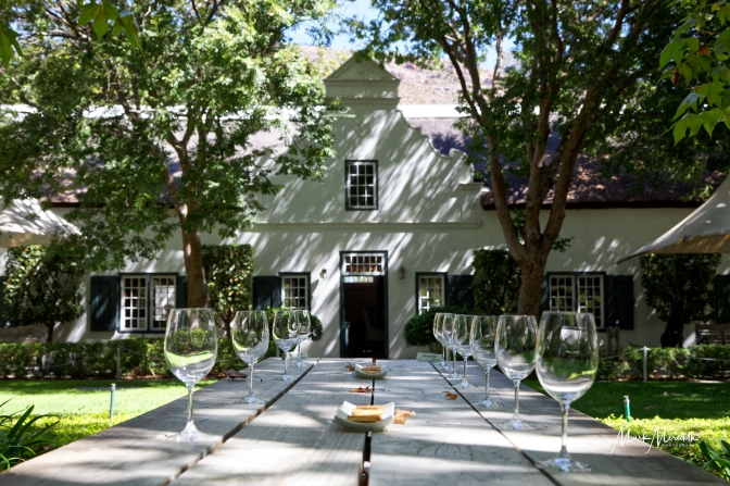 Wine tasting at Grande Provence Estate wine farm in Franschhoek
