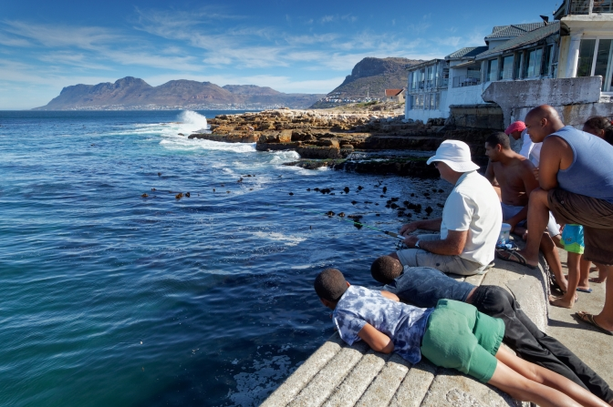 Fishing at Kalk Bay